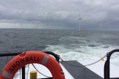 Trip to the wind farm
